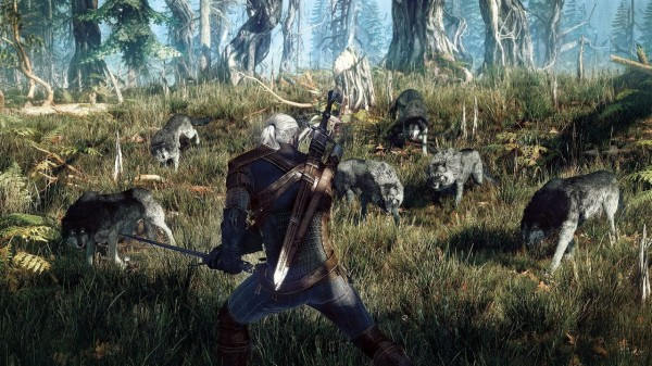 the-witcher-3-wild-hunt-pc-1372235347-044